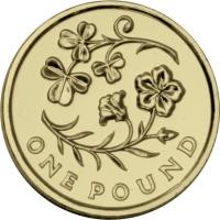 2014-Irish-£1-Single